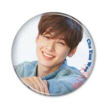 Cha Eun Woo - hűtőmágnes